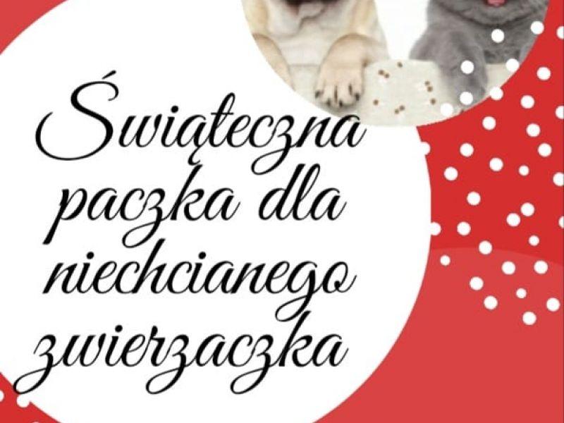na czerwonym tle okrągłe grafiki w jednej pies i kot w świątecznych czapkach w drugiej tekst