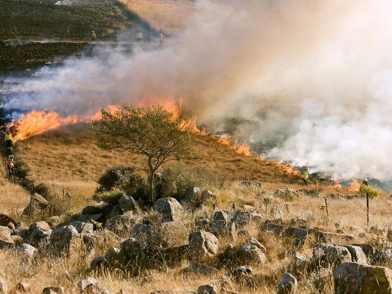 stop pożarom trawm