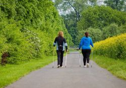 MOK zaprasza na Jesienny Rajd Nordic Walking