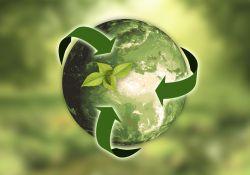 grafika przedstawia kulę ziemską w kolorze zielonym, symbolizującym ekologię planety oraz wyrastający z globu listek