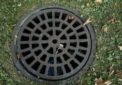 Na zdjęciu pokrywa kanalizacyjna zlokalizowana na trawniku