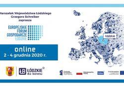 Na zdjęciu baner Europejskiego Forum Gospodarczego w Łodzi, ktore odbywać sie będzie w dniach 2-4 grudnia. Na banerze logo Forum oraz grafika przedstawiająca zarys Europy, a także loga współorganizatorów.